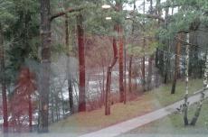 Вид из окна санатория