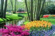 Парк цветов,Амстедам