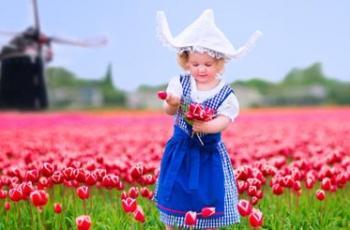 Голландия ,парад цветов